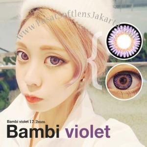 softlens-kimchi-violet korea